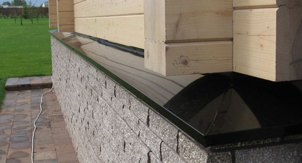муравьи нижниний венец дома Институт физико-органической